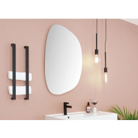 600x895x6mm Special Shape Bathroom Wall Mounted Mirror Irregular Pencil Edge Vertical or Horizontal Copper Free