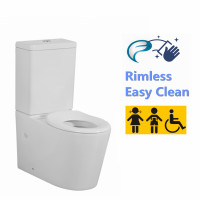 595x335x770mm Wall Faced Toilet Suite with Rimless Pan for Junior Special Care and bathroom