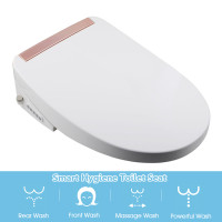 508x380x145mm Electric Intelligent Toilet Seat Cover with Smart Auto Washer Bidet and Instant Heating for toilet